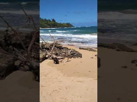 whereGilligan's Islandwas filmed