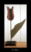 Autumn Tulip