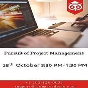 Pursuit of Project Management