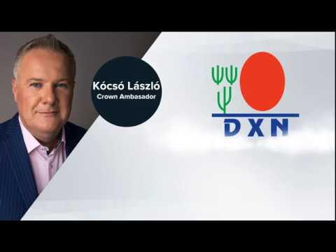 Los pilares más básicos de tu negocio DXN   Lásló Kócsó   Málaga Spain 02 10 2019