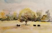 Farmleigh Cattle