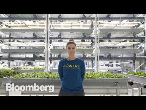 The High-Tech Vertical Farmer