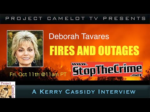 DEBORAH TAVARES :  FIRES AND OUTAGES