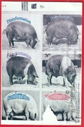 Mail art by Joey Patrickt (Oakland, California, USA)