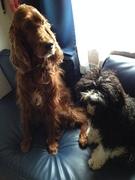 Loumie& Baila