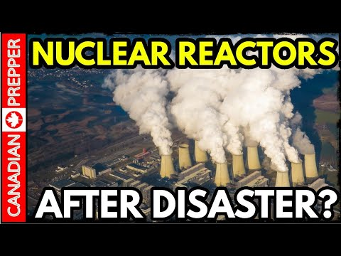 What Happens to Nuclear Power Plants After Global Disaster?