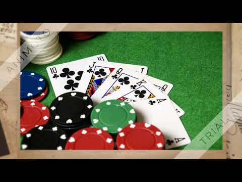 Situs Qq Poker
