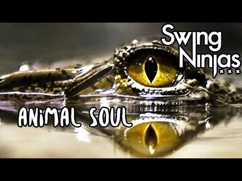 Swing Ninjas - Animal Soul (Official Lyric Video) Brighton via New Orleans Jazz