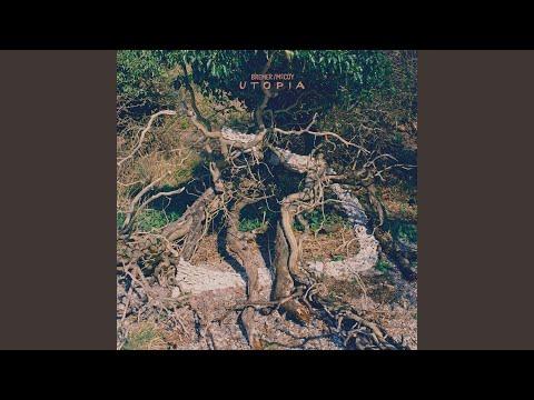 Bremer/McCoy - Åben Bog