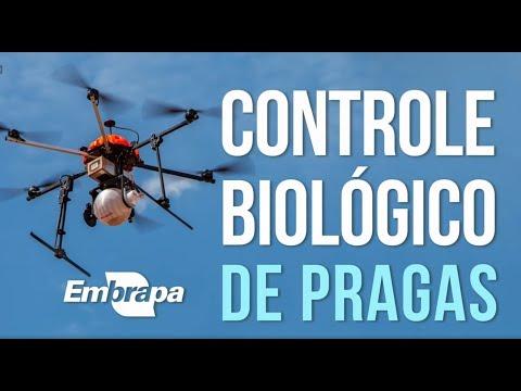 Drones e o Controle Biológico de Pragas