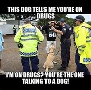 police-drugs