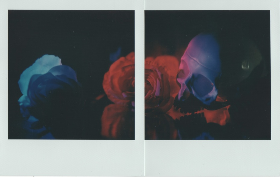 Natura morta (Roses are red, violenta are blue)
