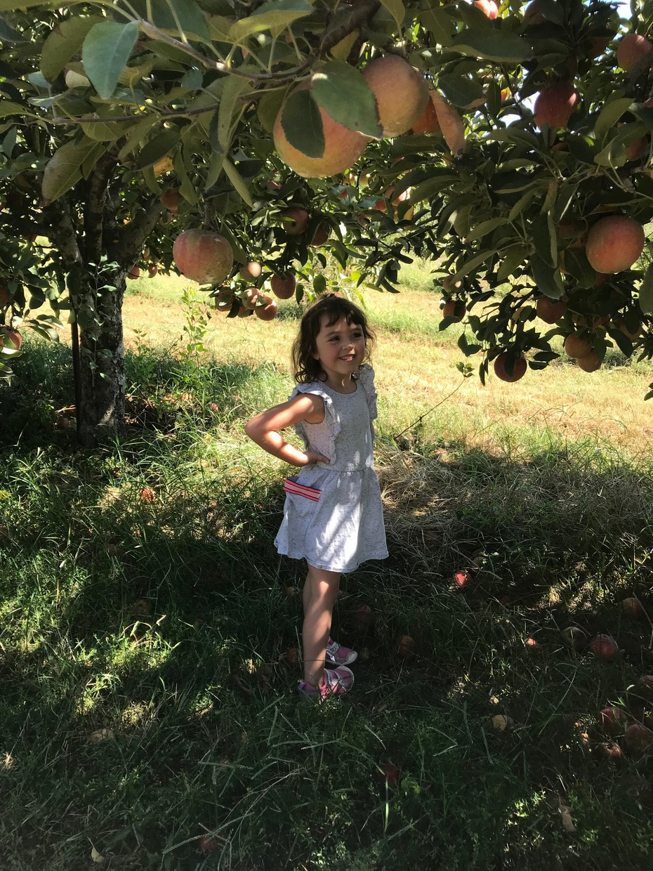 Little Princess under the Apple Tree