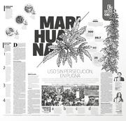Marihuana uso sin persecución,  en pugna