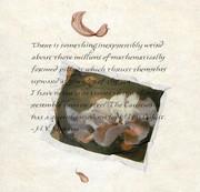 E la bocca, simile a una petunia rosa, piena di promesse... Elizabeth von Arnim