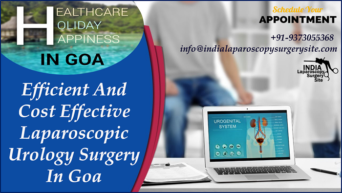 Efficient And Cost Effective Laparoscopic Urology Surgery In Goa