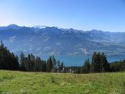 9th ICP Forests Scientific Conference, Birmensdorf, Switzerland