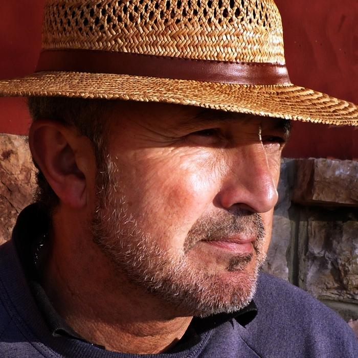Manuel Acebal Fernández