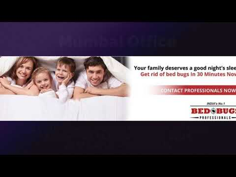Bed Bug Control Pune | Bed Bugs Pest Control Pune | Bed Bugs Treatment Pune