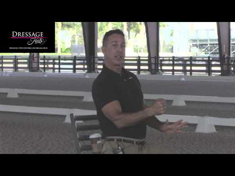 Robert Dover: Half Halt - The Perfect State Of Balance And Attention In Dressage