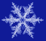 Boyne Valley painting for Snowflakes, Monknewtown 23/11/19