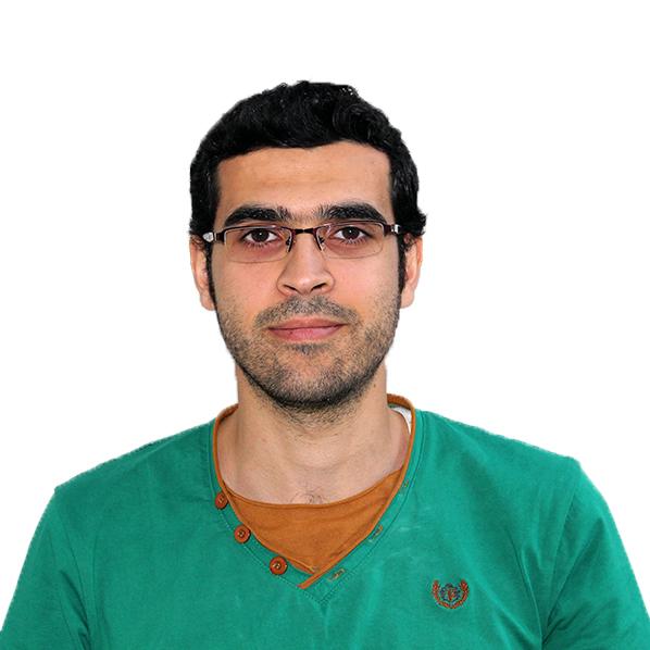 Ahmed M. Al-Hennawi