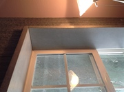 Bathroom remodel Concrete counter tops and window wraps