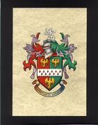 stephens coat of arms