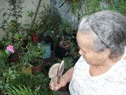 Dona Jacira