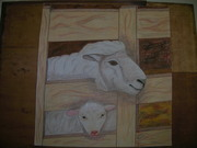 megan ewe lamb in jug unedited