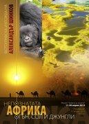 А Шинков - Африка, книга  3