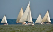 Ida May leading the pack at 2018 Choptank Heritage Race