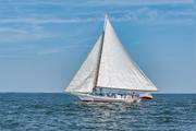 Ida May sailing to first place in the Deal Island Labor Day Skipjack Race 2017