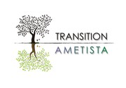 Ametista em Transição