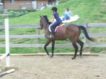 Cantering