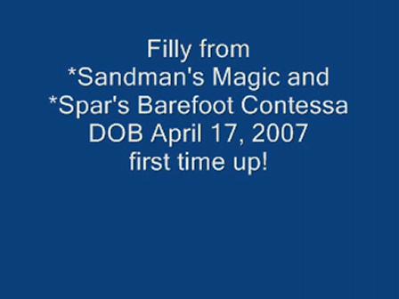 *Sandman's Barefoot Angel