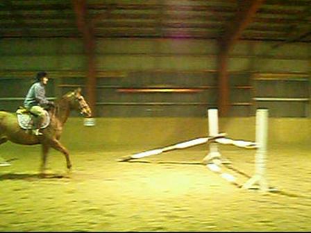 Horse Video: Whistler & Me