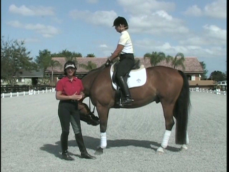Help For the Horse Who Has Trouble Picking Up the Correct Lead