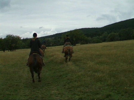 Horse Riding Adventure: Horse Riding in Bulgaria