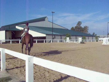 Horse Show Jumping X-Rails