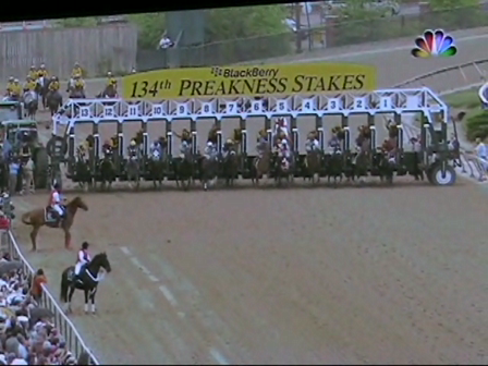 Rachel Alexandra Wins the Preakness!
