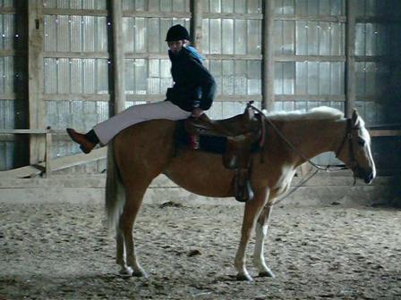 Delilah - 4 year old Quarter Horse Mare