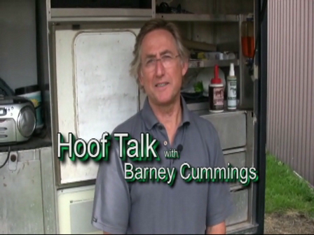 HoofTalk009  What Clients can expect in a Farrier