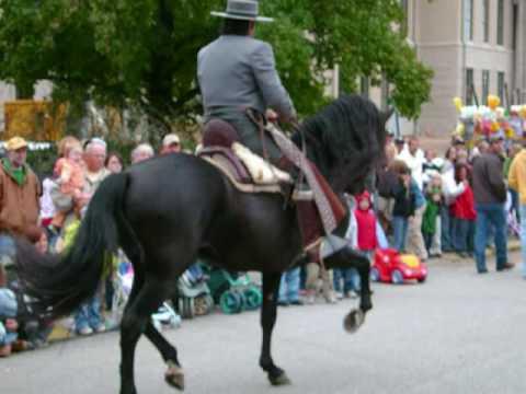 Conquistador XII ~ PRE Black Andalusian Stallion Festival-Parade 09