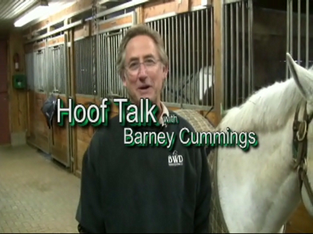 HoofTalk010 Barney trims a Pony
