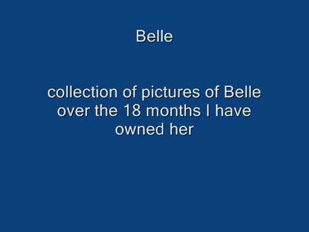 For the love of Belle