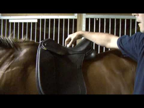 Saddle Fitting in 9 Steps - Step 1 - Balance
