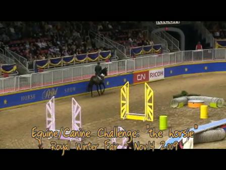 Canine Equine Challenge_Royal 2009