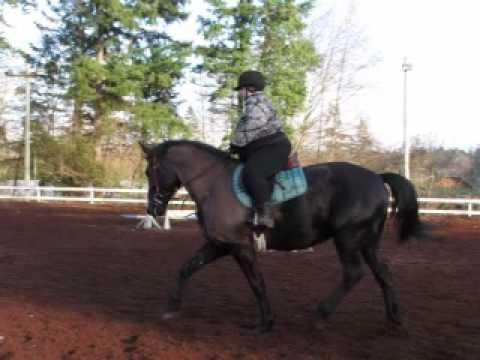 Riding Lesson Jan 2010 part one