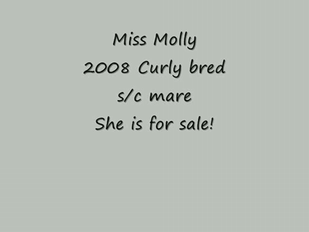 Miss Molly March 2010